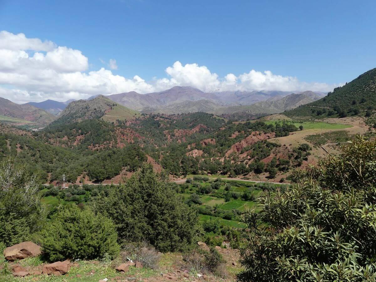 Grüne Berglandschaft