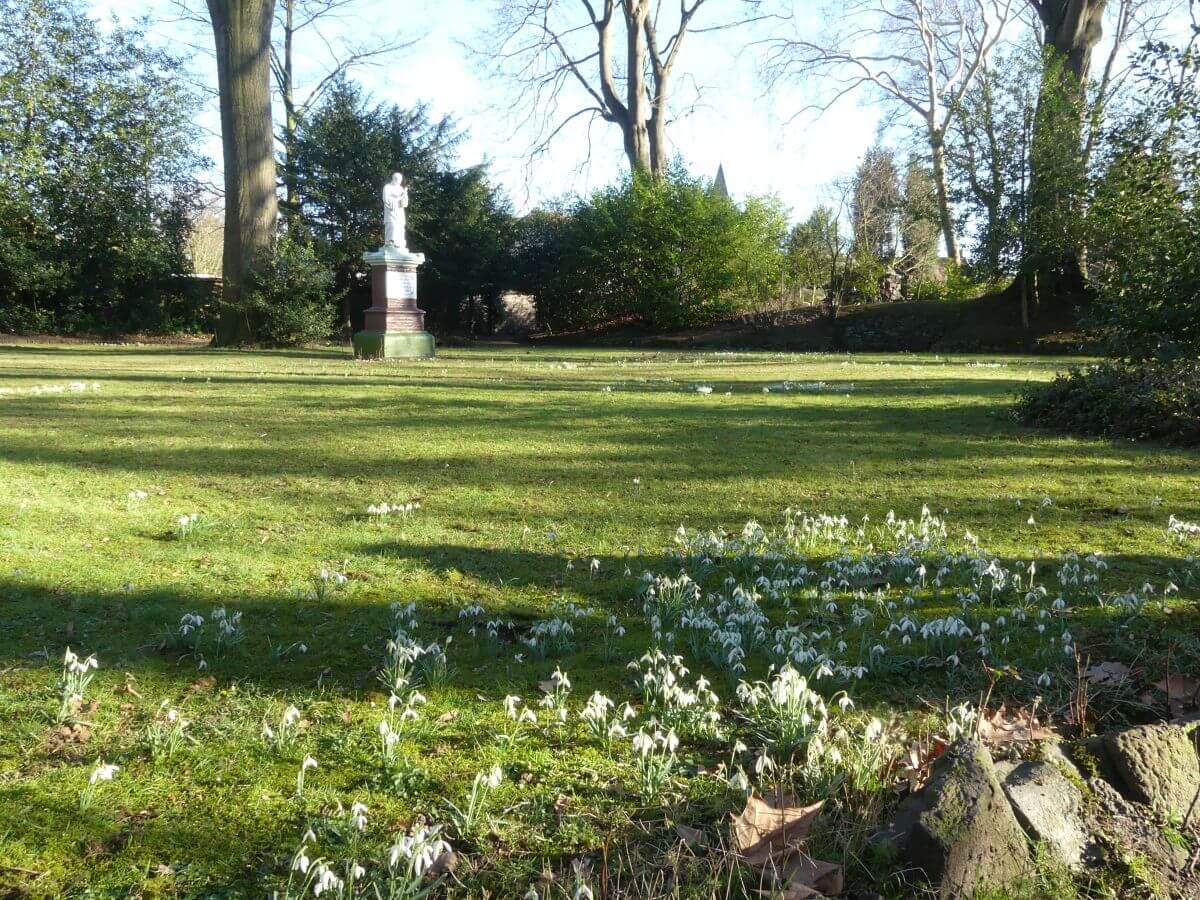Wiese mit Schneeglöckchen, im Hintergrund ein weißes Denkmal