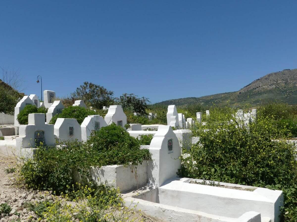 Weiße, schlichte Grabstätten zwischen grünem Gestrüpp.