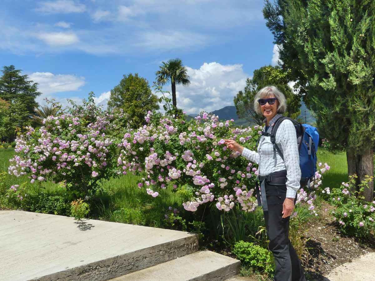 Gina steht an einem großen Rosenstrauch mit rosa Blüten.