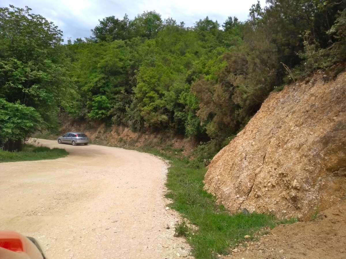 Schotterweg zwischen grüner Vegetation.