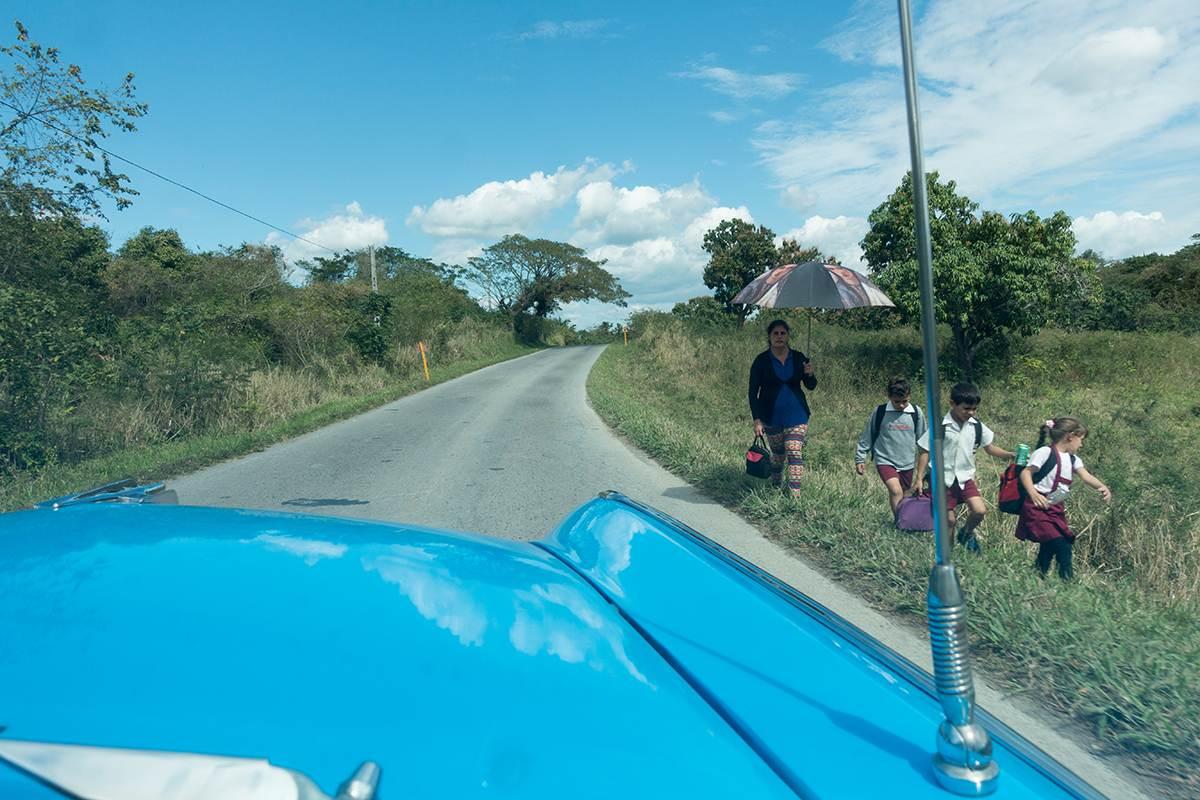 Blick über blaue Motorhaube auf eine Straße.