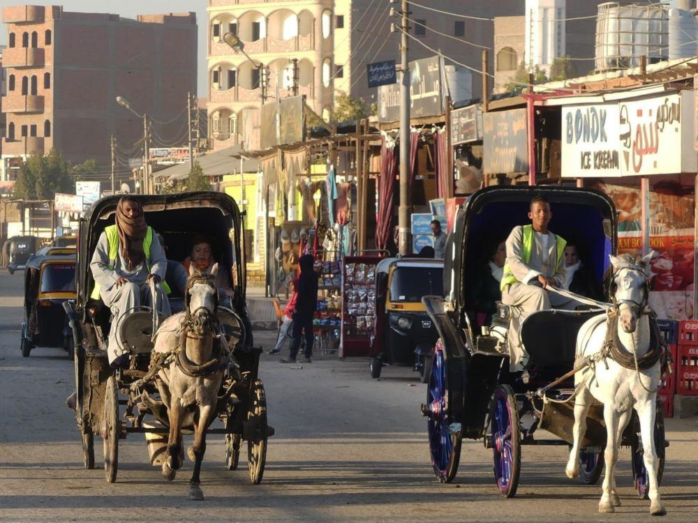 Pferdekutschen auf der Straße.