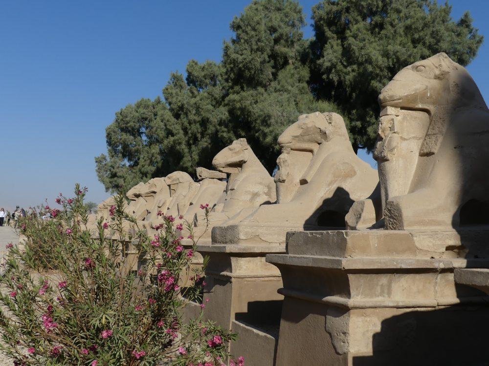 Sphinx-Statuen mit Widderköpfen.