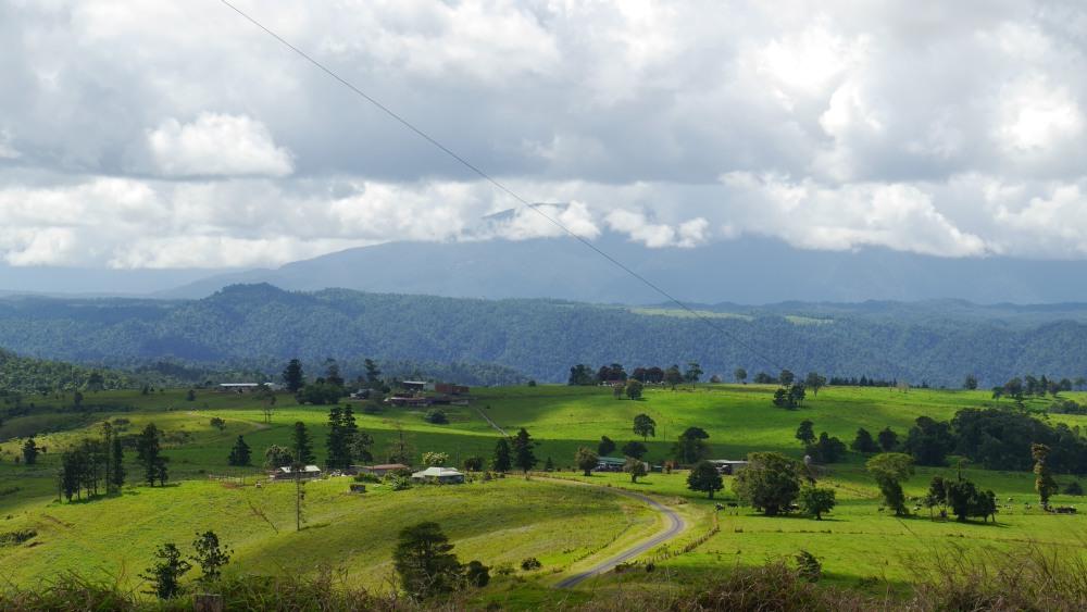 Grüne Hügel mit Wiesen.