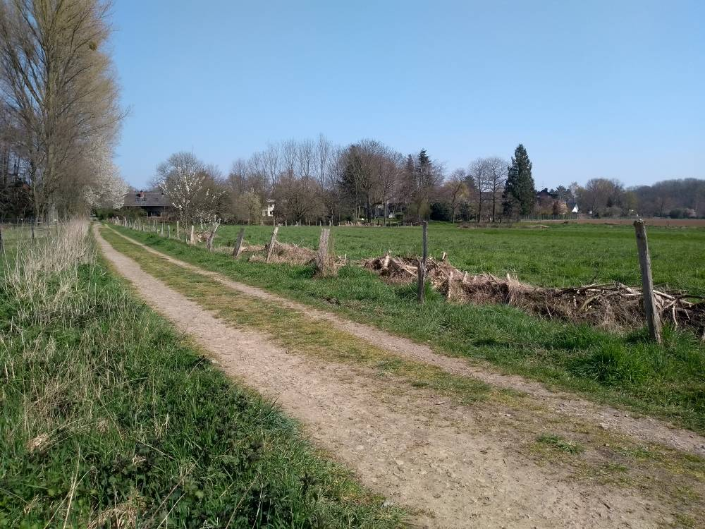 Feldweg am Niederrhein.