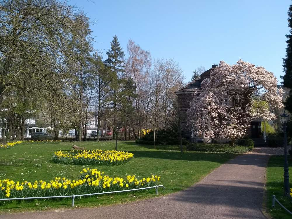 Blumenbeete im Stadtpark von Grevenbroich.