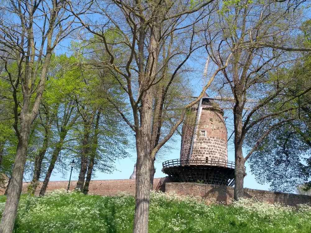 Windmühle auf der Stadtmauer von Zons.
