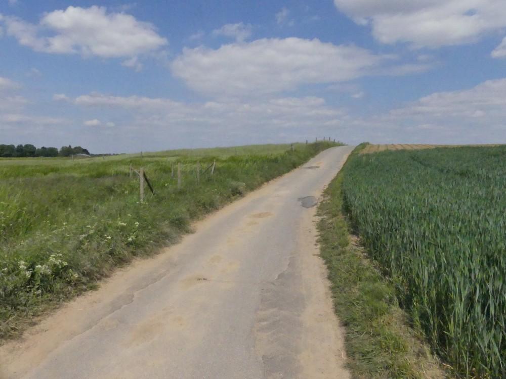 Feldweg führt leicht aufwärts.