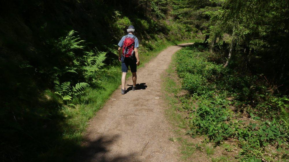 Marcus wandert auf Waldweg.