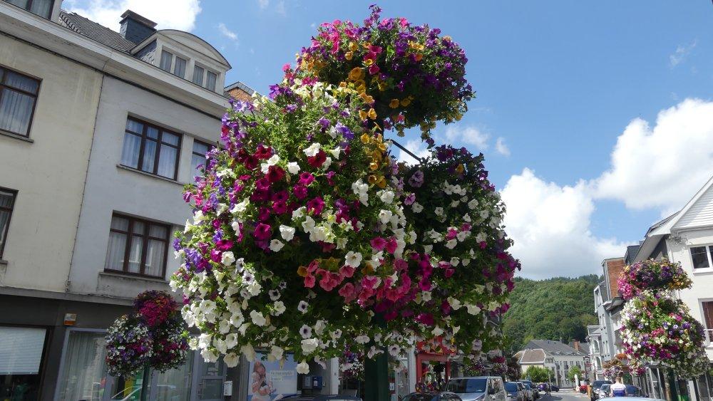 Blumenampeln in Malmedy.