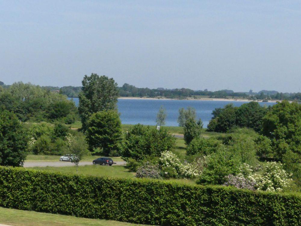 Grünes Ufer am Rhein.