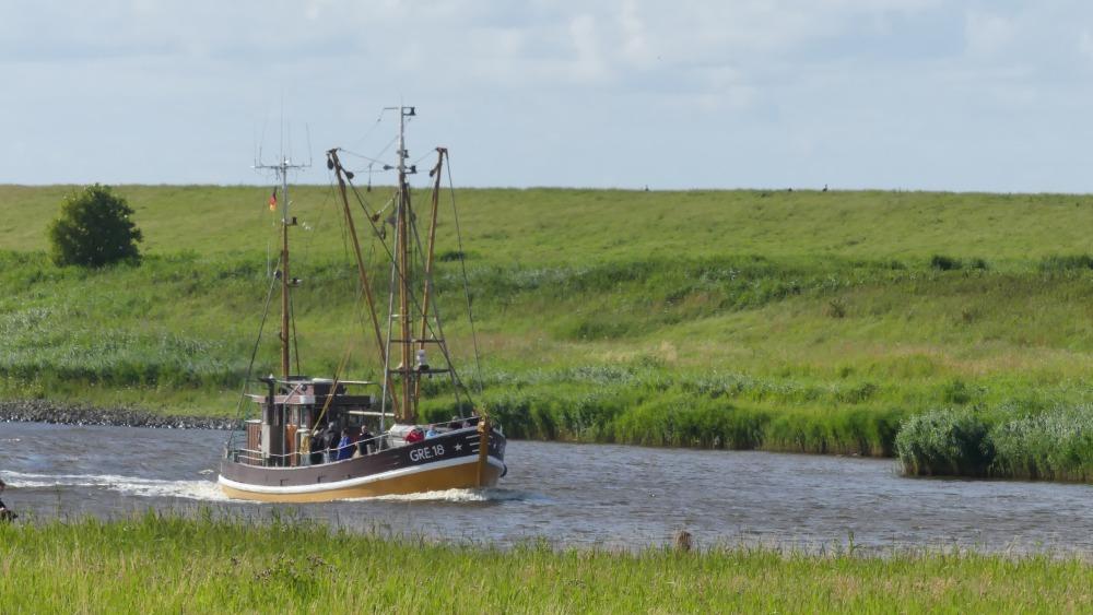 Schiff fährt durch die Wasserstraße zwischen grünen Ufern.