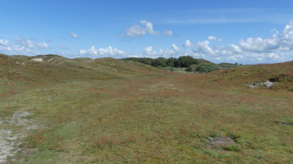 Hügelige Landschaft.