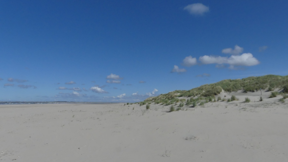 Sandstrand mit Dünen.