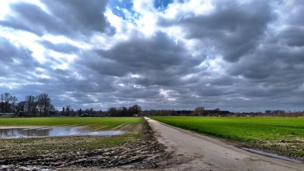 Feldweg und Wolkenhimmel.