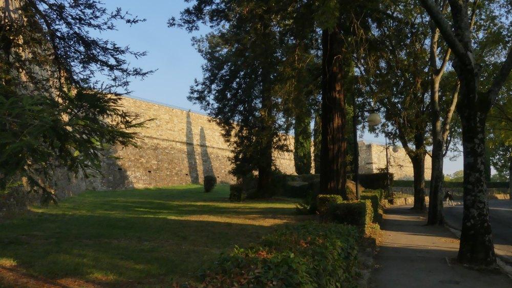 Grüner Rasen und große Bäume vor einer Festungsmauer.