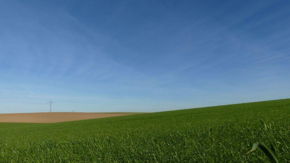 Flache grüne Felder unter blauem Himmel.