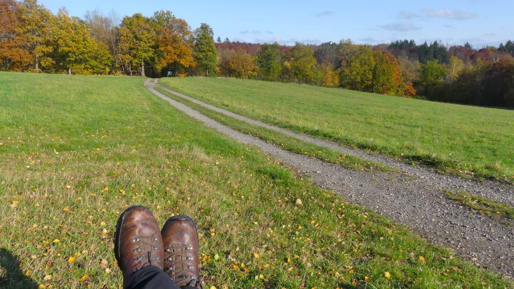 Füße mit Wanderschuhen im Vordergrund vor der Wiese.