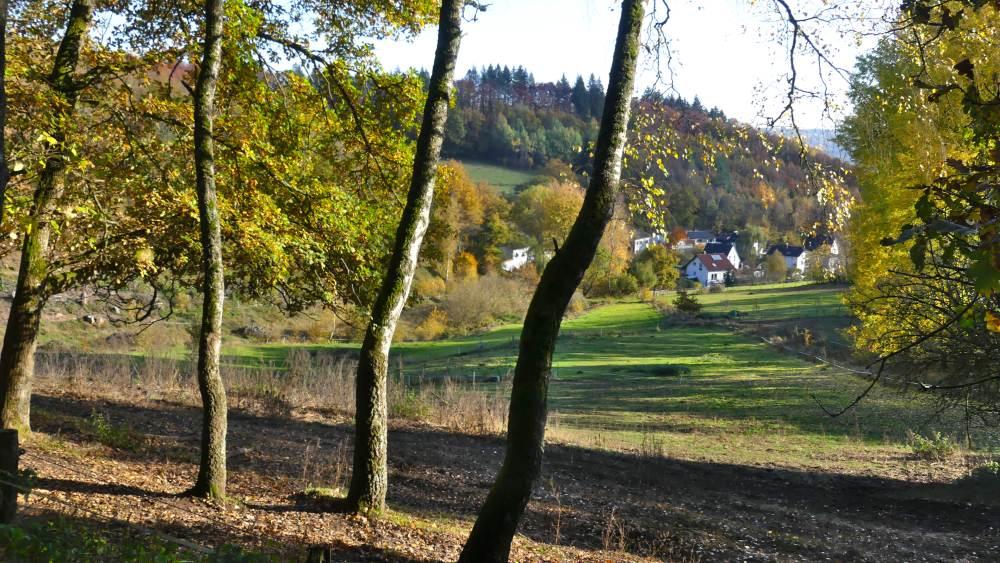 Blick in ein grünes Tal in NRW.