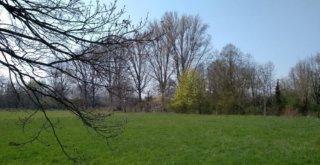 Landschaft am Niederrhein.